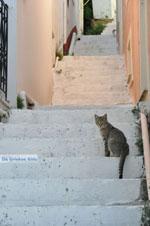 Stenies | Eiland Andros | De Griekse Gids foto 8