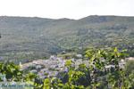 Stenies | Eiland Andros | De Griekse Gids foto 33 - Foto van De Griekse Gids