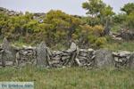 Chalkolimnionas | Eiland Andros | De Griekse Gids foto 8
