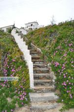 Batsi | Eiland Andros | De Griekse Gids | Foto 6