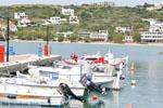 Batsi | Eiland Andros | De Griekse Gids | Foto 58 - Foto van De Griekse Gids