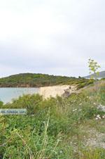 Strand bij Batsi   Eiland Andros   De Griekse Gids   Foto 5