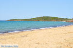 Strand Kypri (Golden Beach) bij Batsi | Eiland Andros | De Griekse Gids foto 001
