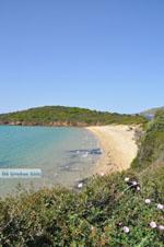 Strand Kypri (Golden Beach) bij Batsi | Eiland Andros | De Griekse Gids foto 008