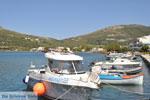 Haven Gavrio | Eiland Andros | De Griekse Gids | Foto 7